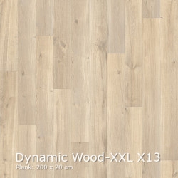 Interfloor Dynamic Wood-XXL X13